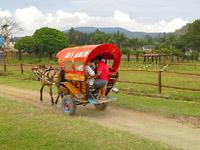 De Ranch, Lembang