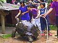 Wisata Edukatif di Godong Ijo (Eco-Tainment, Eco-Arts & Eco-Science)